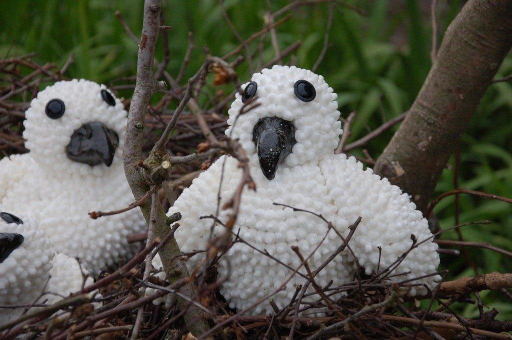 Kuien uit het nest - Niet te Koop