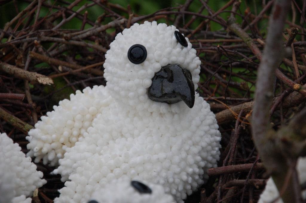Kuiken uit het nest - Niet te Kooop